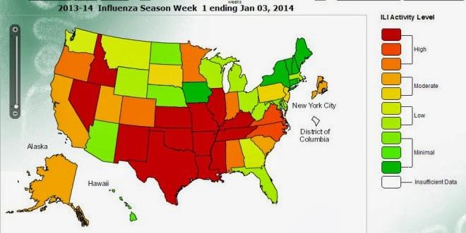 USA H1N1 epidemic