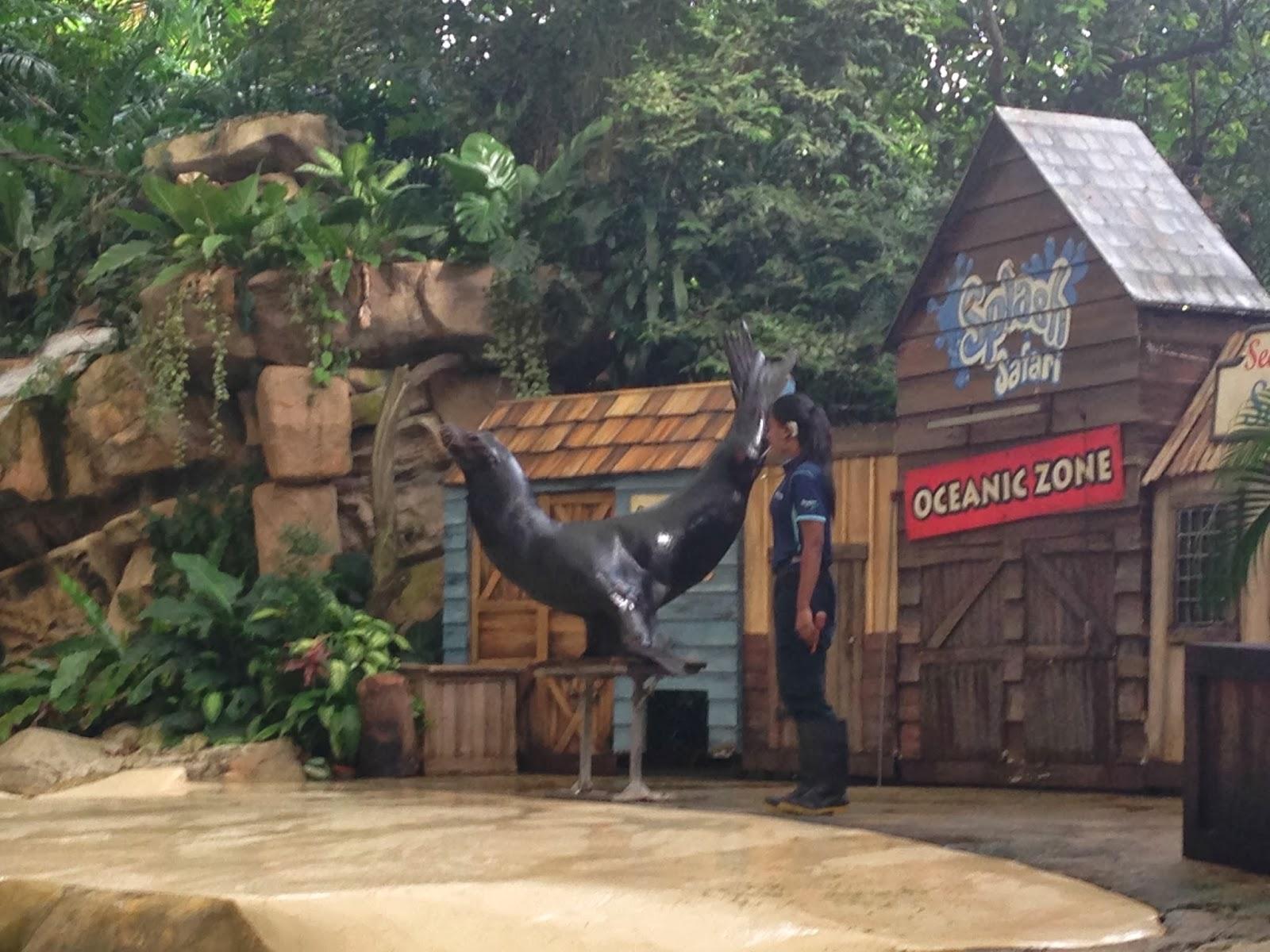 Singapore Zoo shows-Singapore Zoo show timings-Singapore ZOo video