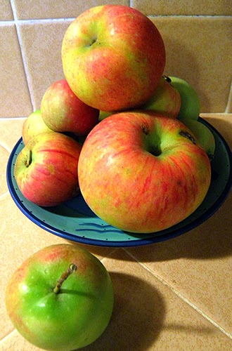Plate of Apples with one on counter