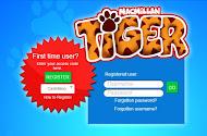 TIGER( 1º -2º -3º -4°-5°-6°)
