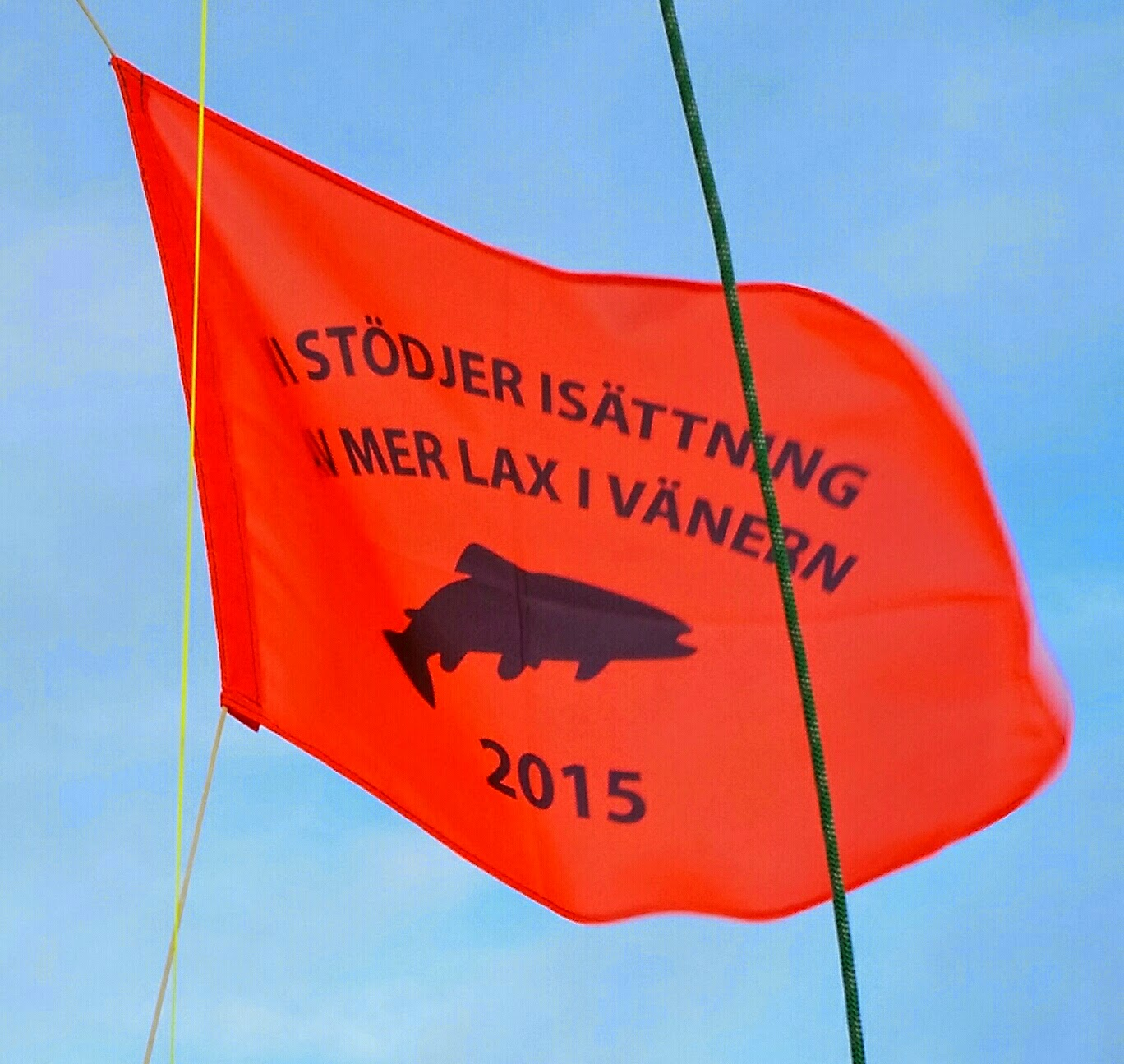 Köp flaggan av Team Bull, Melleruds trollingklubb