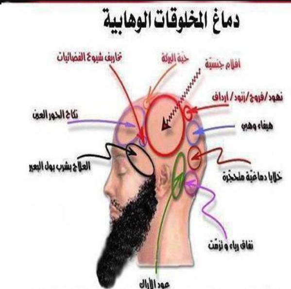 دماغ الارهابيين الوهابيين