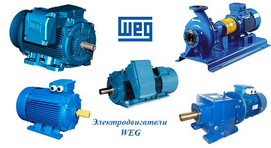 электродвигатель w22