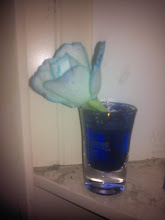 A tweeter shows off his or her blue rose