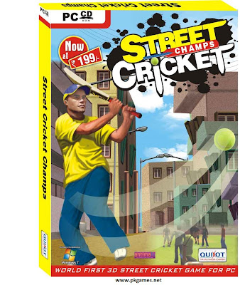Street Cricket 2010 PC Game Free Download