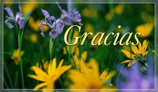 Imagenes de Gracias, parte 5