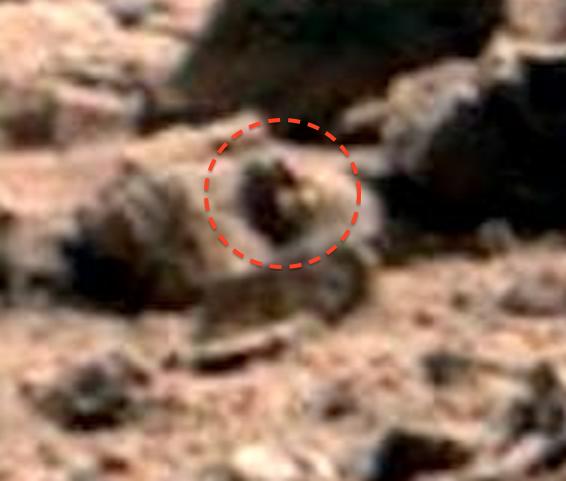 Ufo Sightings Daily Alien Snail Like Creature On Mars