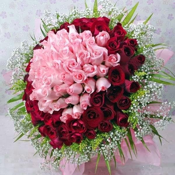 100 batang mawar yang indah dan anggun