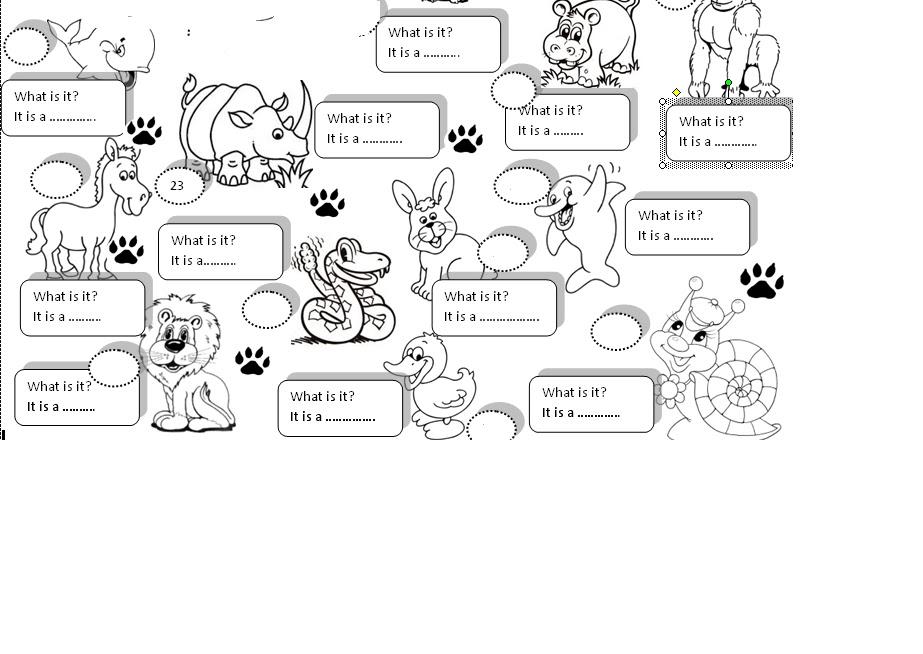 Il mistero dello zoo stampa e colora english activity - Zoo animali da colorare ...