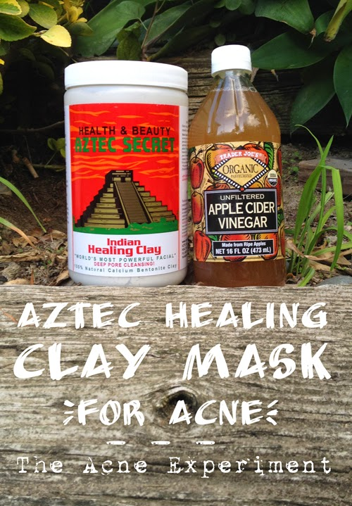 Aztec Healing Clay Mask for Acne :: Crappy Candle