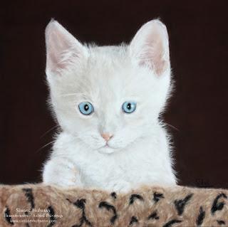 Tierportrait Katzenportrait mit Pastellkreide nach Fotovorlage malen lassen.