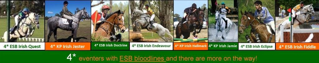 ESB has helped to produce eight 4* eventers