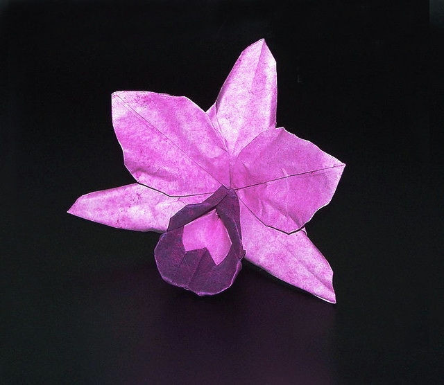 orchidcraze wonderful orchid origami