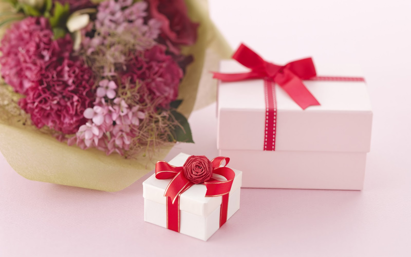beauty flower: gift and love flower wallpaper