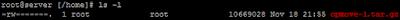 Linux Sunucuda Shell(SSH) Üzerinden Backup İşlemleri