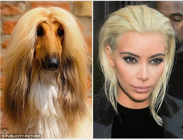 Salen en busca de EL o LA doble Kim Kardashian