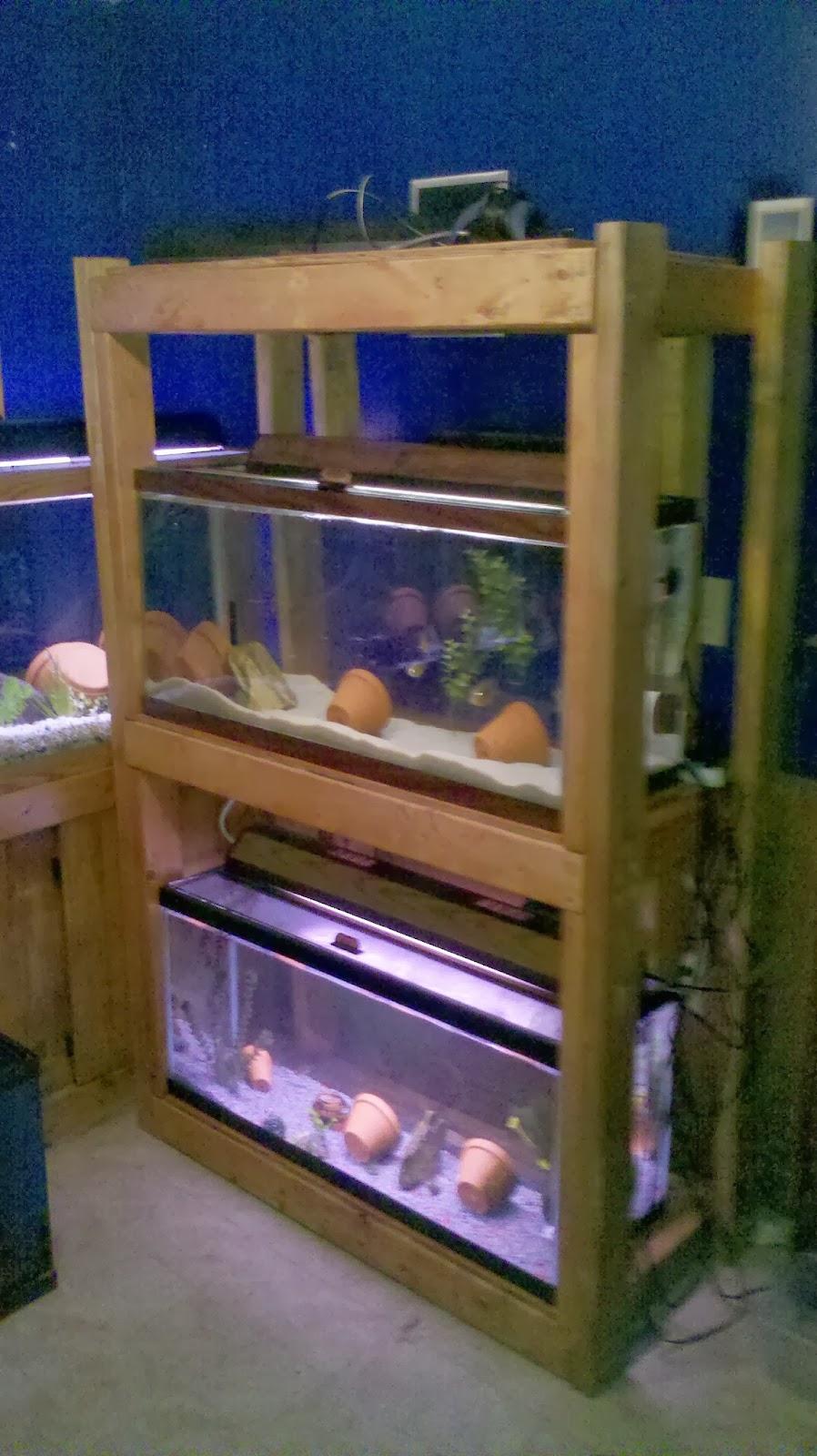 triple aquarium stand