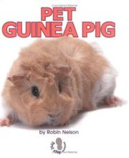bookcover of Pet Guinea Pig by Robin Nelson
