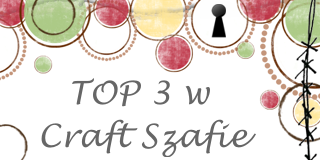 top 3 w Craft Szafie