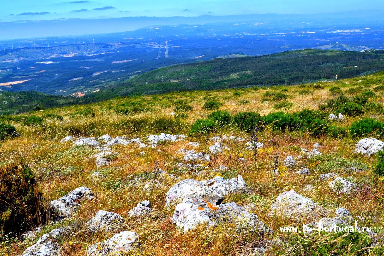 что посетить в Португалии