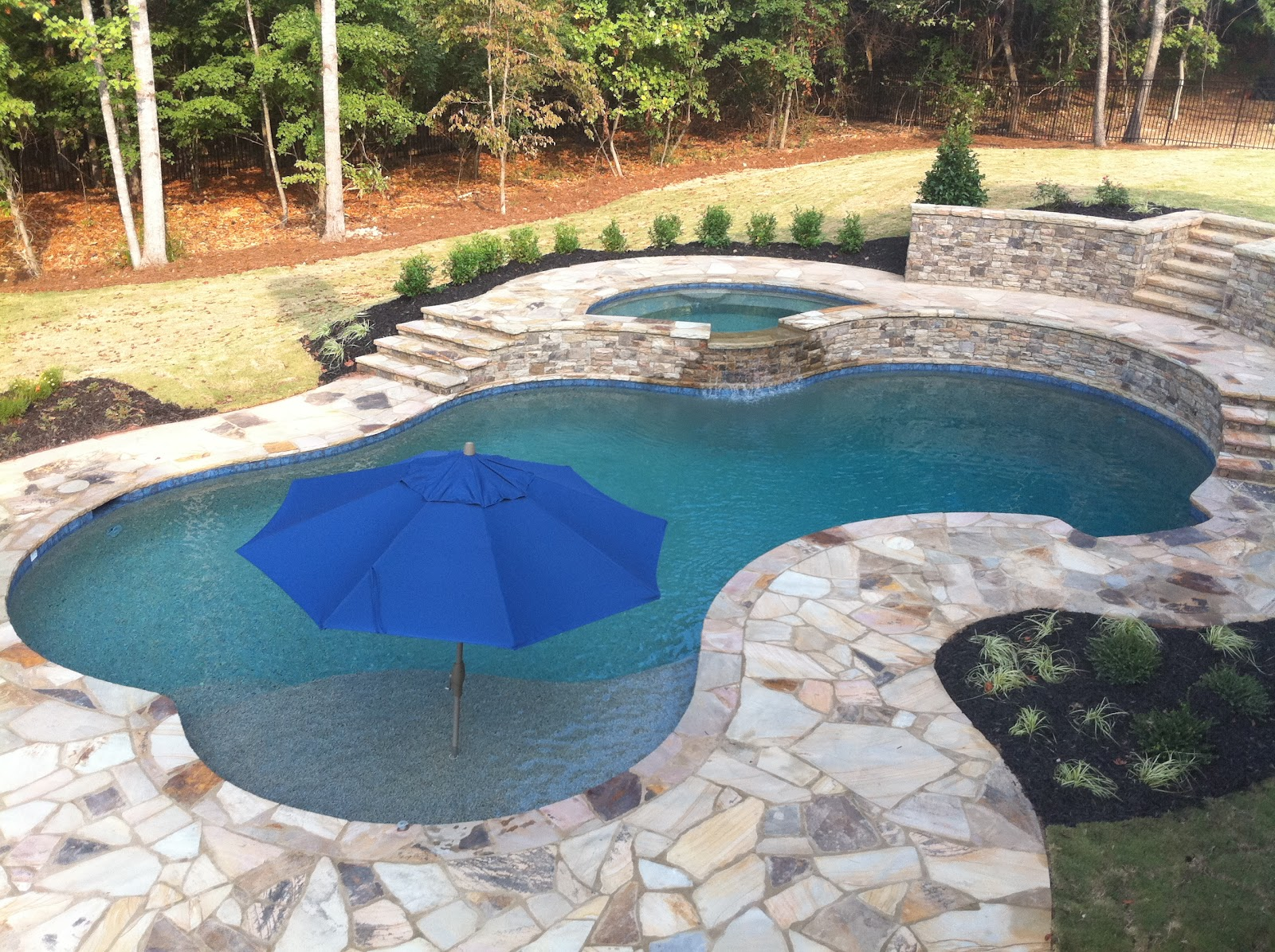 Backyard oasis pools free form pool roswell for Pictures of backyard pools