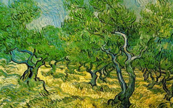 Vincent Van Gogh Paintings
