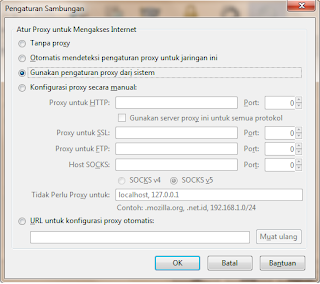 cara setting proxy dns