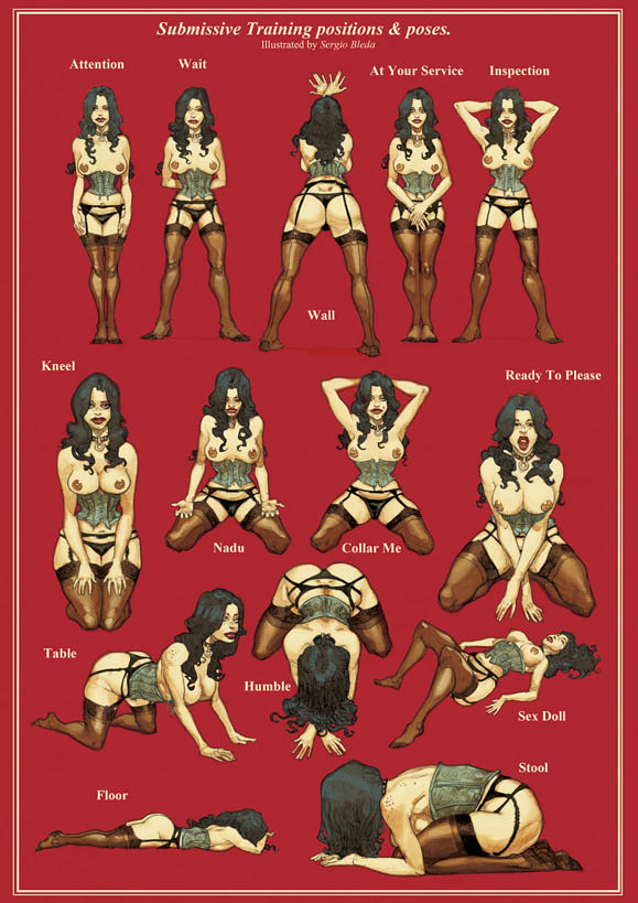 BUY PRINT: Submissive Training positions & poses