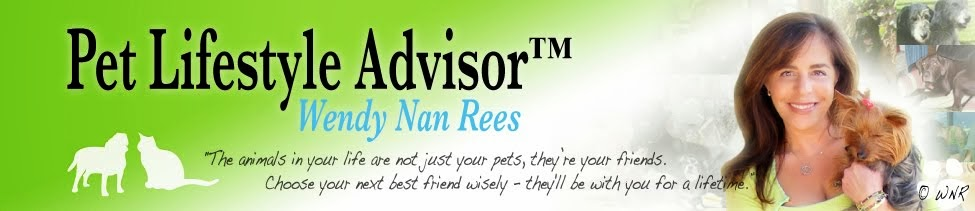 Pet Health Advice and Pet Tips by Pet Expert Wendy Nan Rees