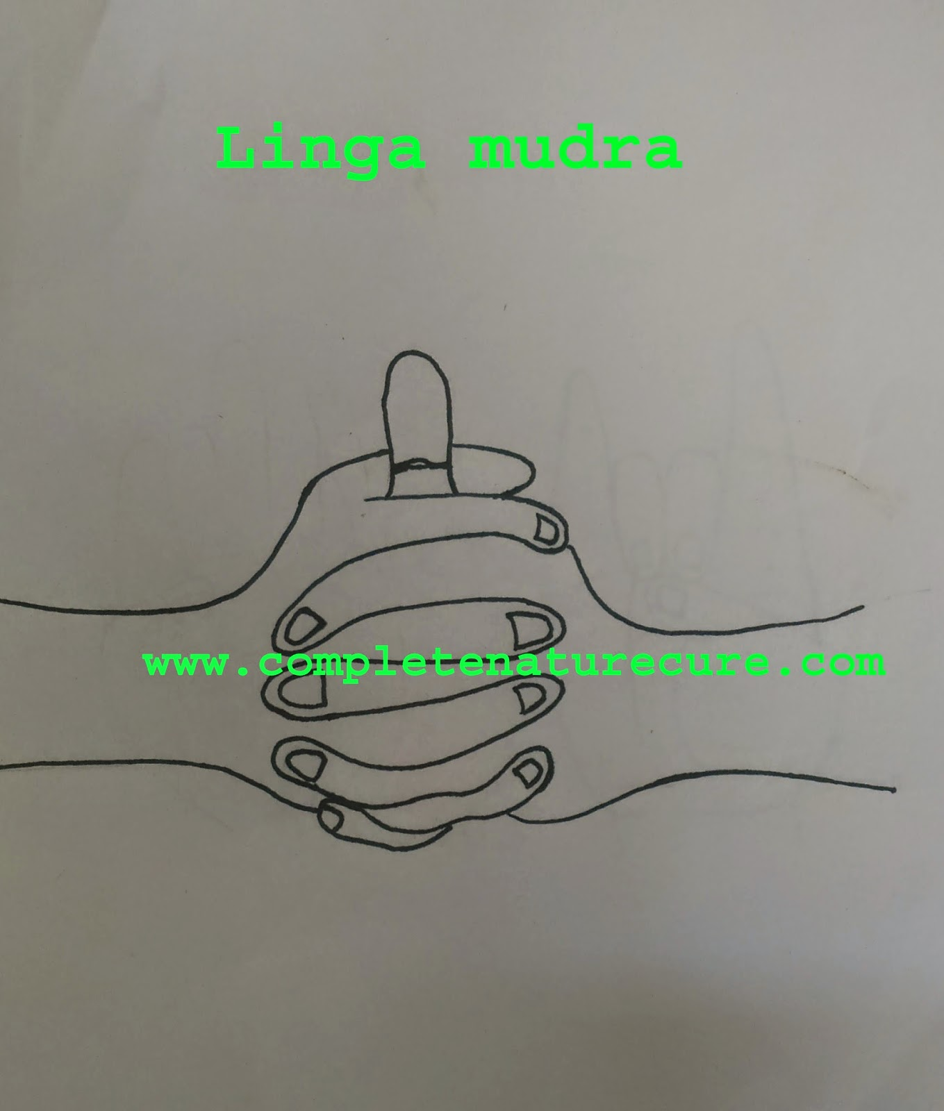 Linga mudra and its benefits
