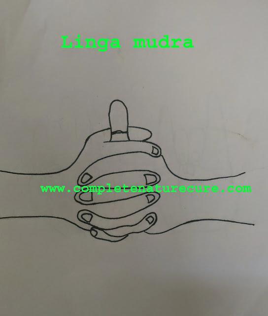 Linga mudra and its benefits