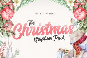 December Font Bundle