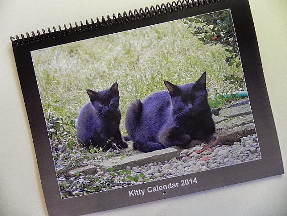 Buy a 2014 Kitty Calender from Song Sparrow Treasures!