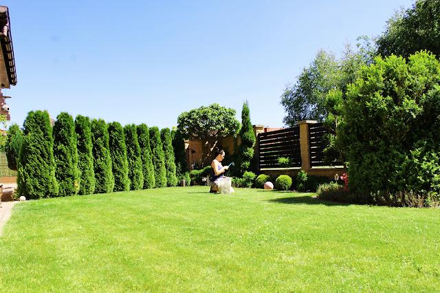 drewniane belki w domu,nowoczesny dom design,interiors designer,blog majsterkowanie szczecinszpaler tuji, zielona soczysta trawa,spirala z tuji,elegancki ogród