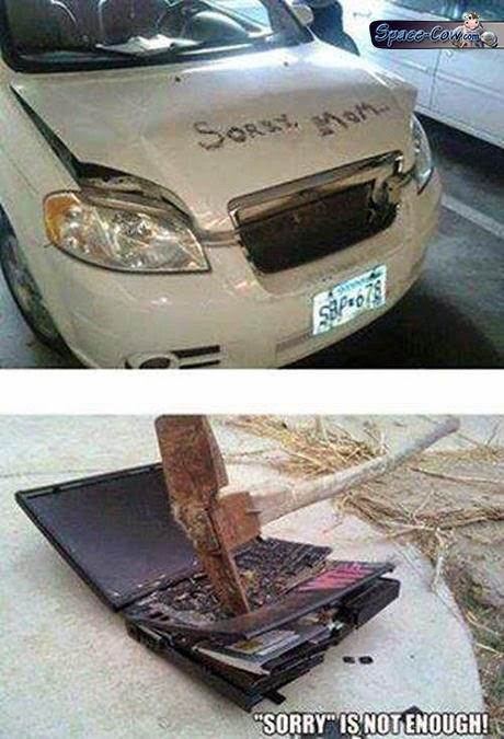 funny things car pics