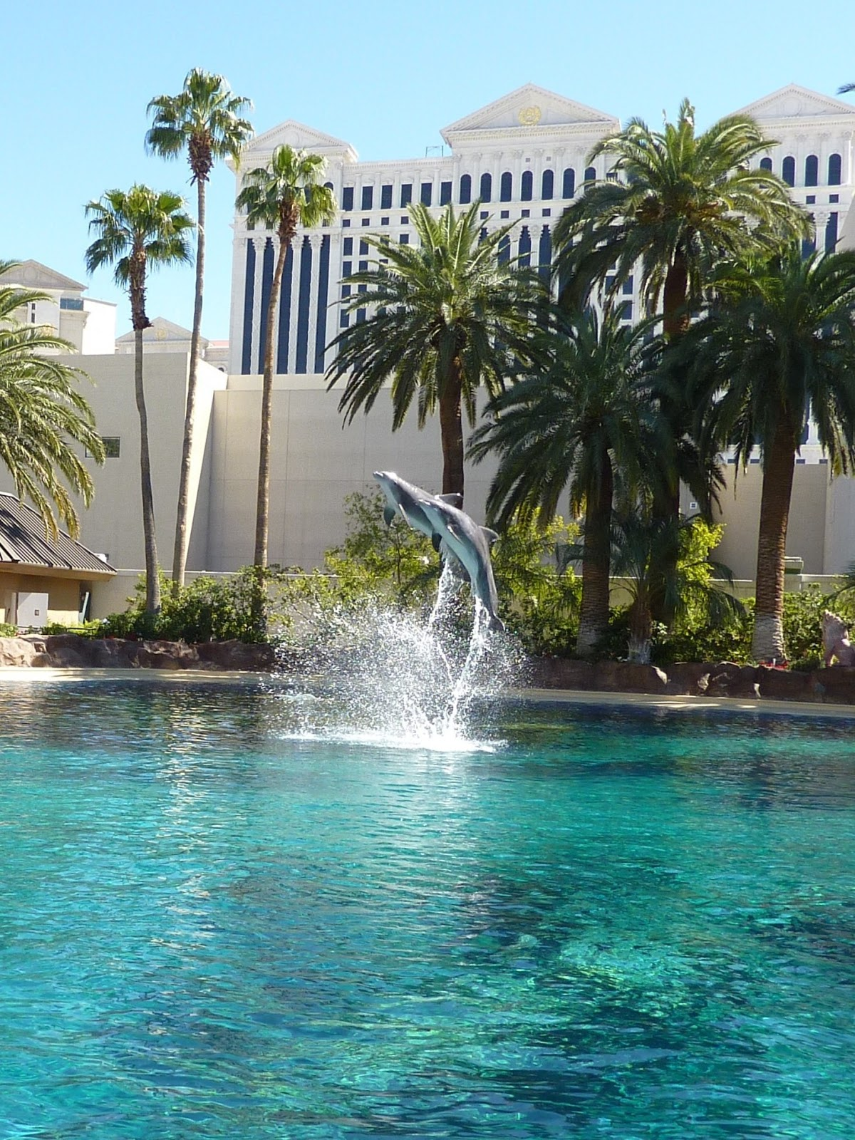 Outstanding Fun Days Las Vegas With Kids With Excellent It Was The Closest Ive Been To Dolphins And They Were Really Sweet To Watch  Then The Trainers Came And Did A Few Tricks With Them In The Secret Garden   With Appealing Rattan Garden Furniture Sofa Also Garden Wall Features In Addition Sell Gold Hatton Garden And Garden Trading Voucher As Well As Gardens Additionally Natwest Covent Garden From Utahfundaysblogspotcom With   Excellent Fun Days Las Vegas With Kids With Appealing It Was The Closest Ive Been To Dolphins And They Were Really Sweet To Watch  Then The Trainers Came And Did A Few Tricks With Them In The Secret Garden   And Outstanding Rattan Garden Furniture Sofa Also Garden Wall Features In Addition Sell Gold Hatton Garden From Utahfundaysblogspotcom