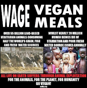 WAge Vegan
