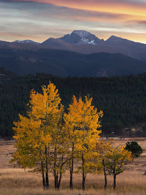 Longs Peak in Autumn in Rocky Mountain National Park Colorado near Estes Park with aspen trees