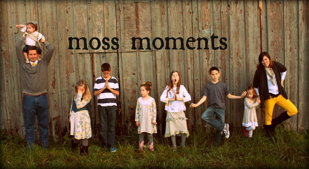 Moss Moments