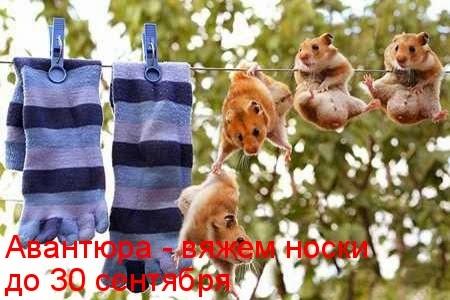 """Авантюра """"Вяжем носочки"""" с ЛЮССС"""