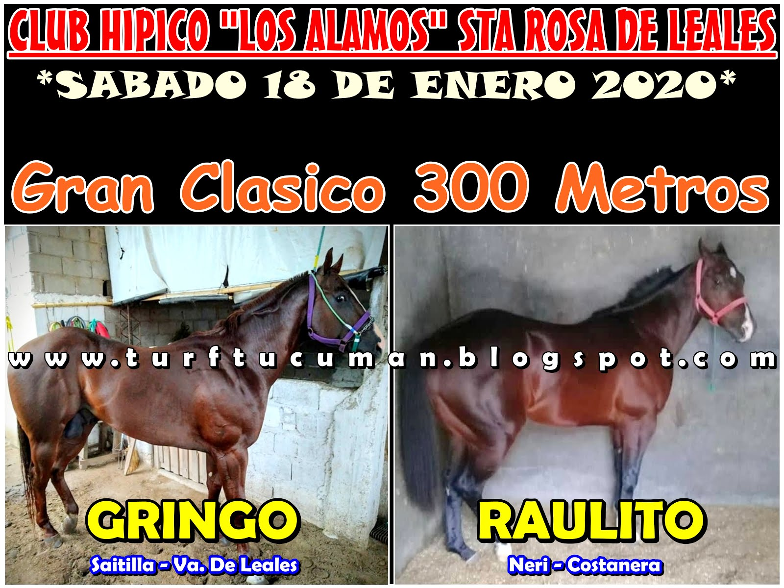 GRINGO VS RAULITO