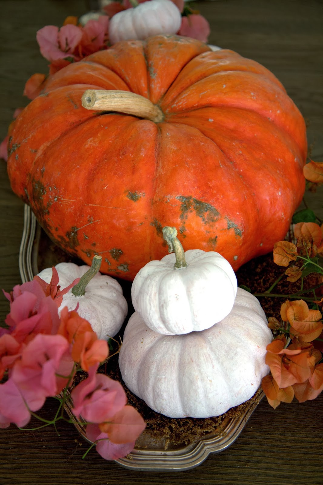 Colorful Thanksgiving Centerpiece with Pumpkins