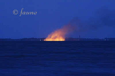 Marsh Fires on the Currituck Sound