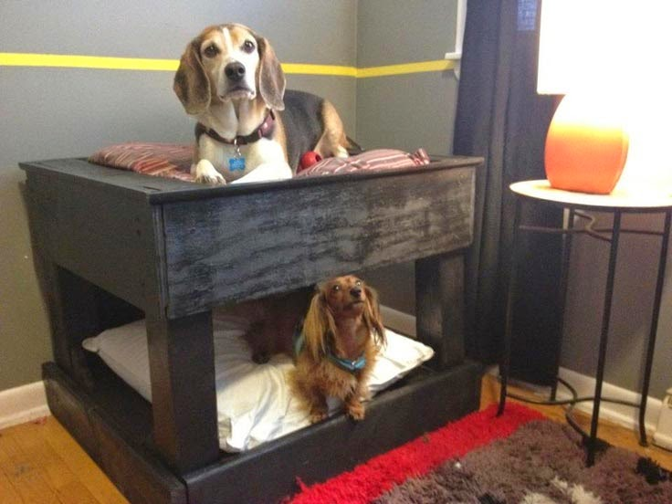 how to make a high dog bed