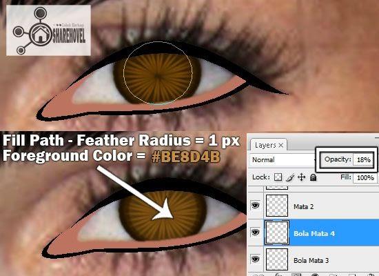 membuat vector kartun bola mata menggunakan photoshop - tutorial membuat vector di photoshop - membuat foto menjadi kartun dengan photoshop
