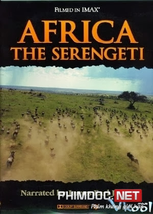Khám Phá Thiên Nhiên Hoang Dã Vùng Đất Serengeti