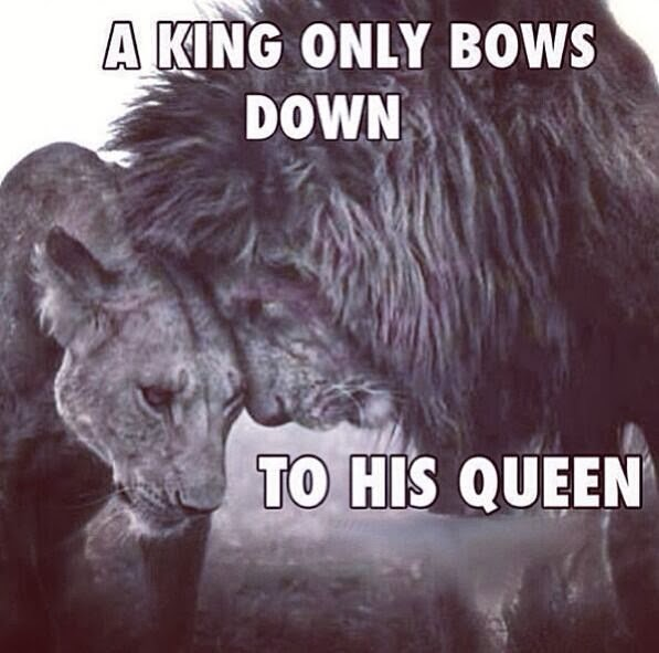 King And Queen Quotes Pinterest a King Only Bows Down to His