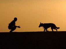 siluetas de hombre y perro