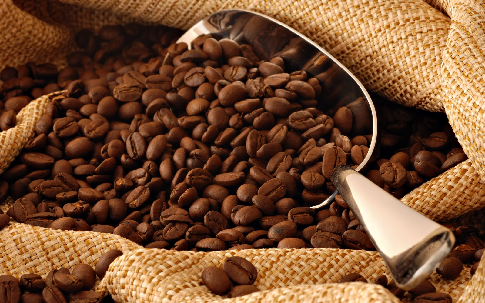 Image result for Liberica coffee beans