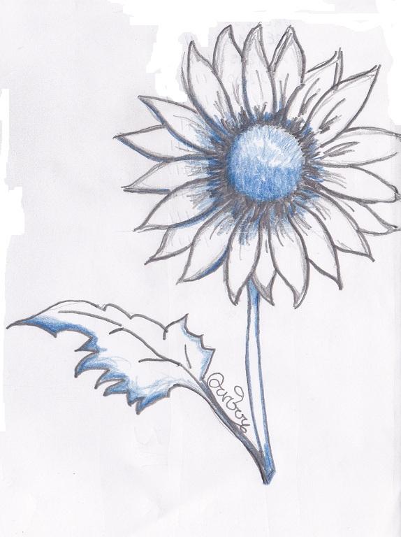 Arte semplice e poi il disegno dei fiori visti anche for Immagini di fiori facili da disegnare
